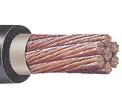 Cables Portaelectrodos  600 / 105 °C